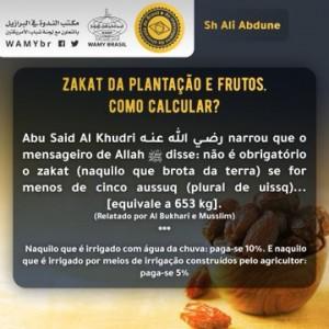 Zakat da plantação e frutos. Como calcular?