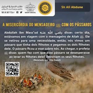 A misericórdia do mensageiro ﷺ com os pássaros