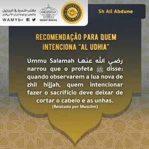"""Recomendação para quem intenciona """"al udhia"""""""