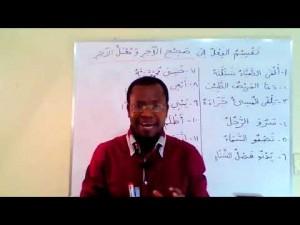 Curso de língua árabe: As divisões de verbo árabe. Módulo 1